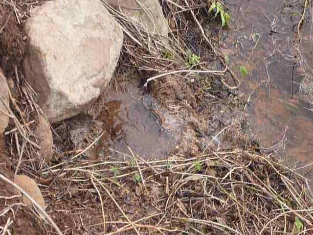 uma das fontes de água desprotegidas e destruidas pela ação do homem.JPG